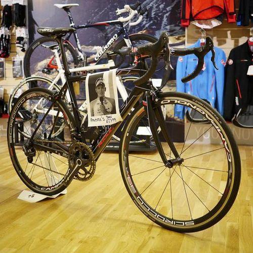 28 Командных велосипедов lotto-belisol выставили на продажу