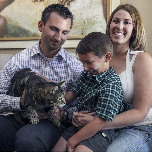 Героическая кошка тара спасает ребенка