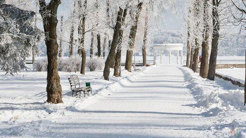 Хочешь в зимнюю финляндию бесплатно? есть возможность!