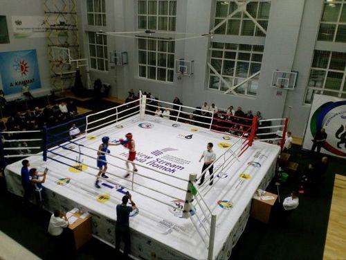 Юные спортсмены вышли на ринг