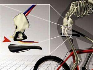 Как езда на велосипеде влияет на потенцию