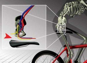 Как выбрать велоседло: полное руководство по выбору сиденья для велосипеда