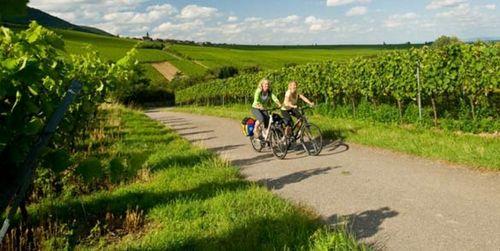 Насколько опасны дороги для велотуриста