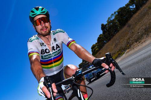 Петер саган - победитель тура фландрии 2016