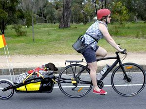 Тележки для велосипедов