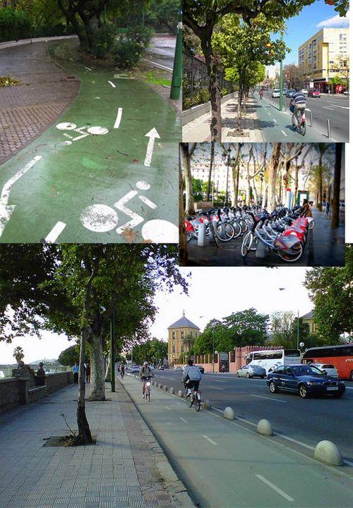 Велодорожки — будущее больших городов?